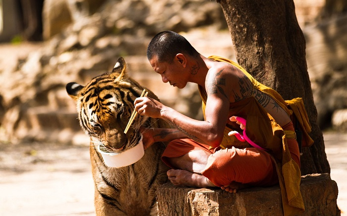 9 Extraordinary Life Lessons I Will Never Forget From Studying With A Monk For 10 Years