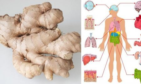 Ginger Extraordinary Healing Properties